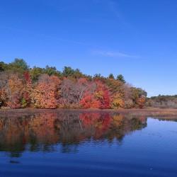 Beautiful fall scenery on a local lake in RI